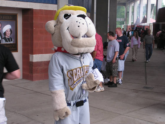 Scrappy - The Mahoning Valley Mascot